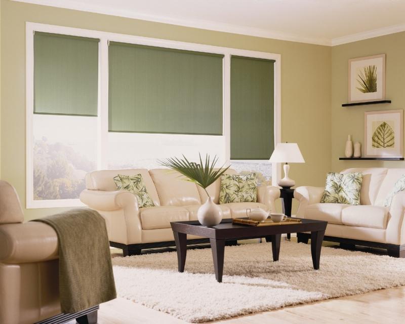роллерные шторы в гостиной