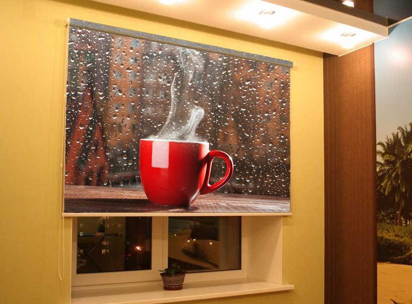 рулонная штора с 3д фотопечатью для кухни
